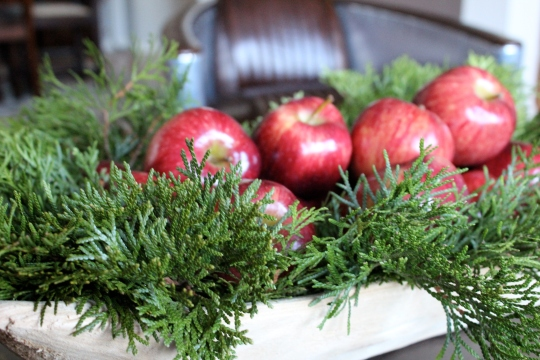 Apples In Bowl For Christmas